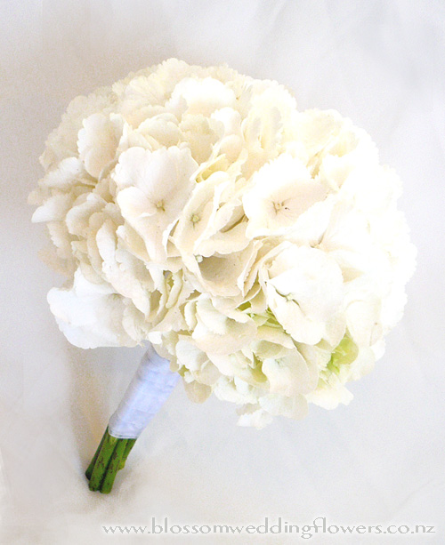Wedding White Hydrangea: Bouquet HELP